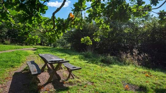 Picnic table, Cefn Ila
