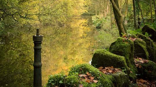 River wall and post, Skipton Castle Woods