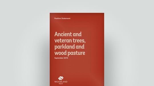 Ancient trees position statement, September 2013