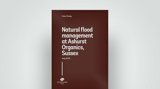 Natural flood management at Ashurst Organics, Sussex. 2018 case study