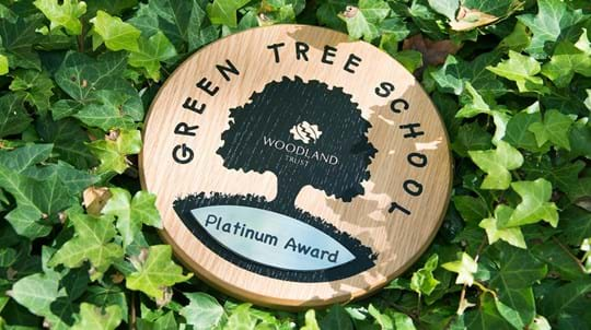 Green Tree Schools Award plaque