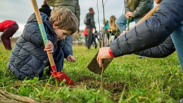 Boy planting a tree at Heartwood Forest