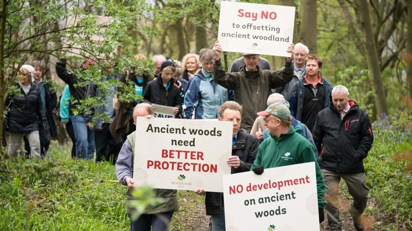 Group of campaigners in Smithy Wood with placards to protest against development