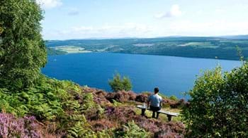 Summer's view over Loch Ness from bench in Abriachan Wood, Scotland
