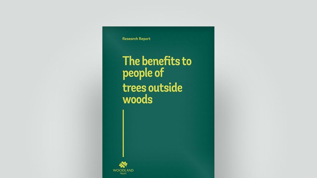 Trees outside woods report, 2018