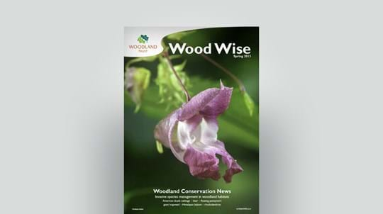 Cover of Wood Wise Spring 2013 - invasive species