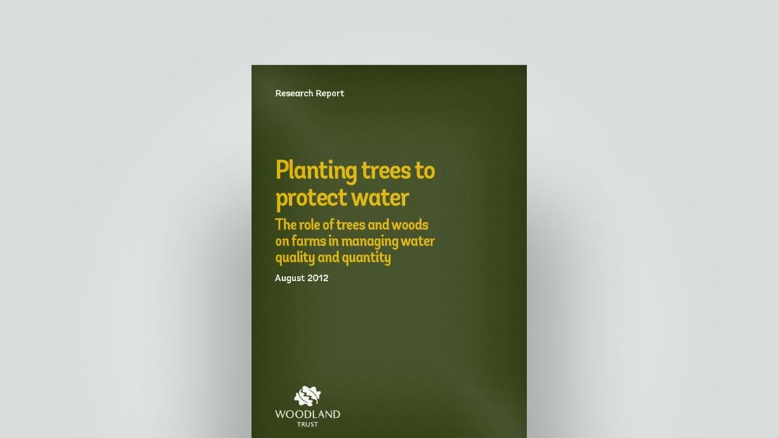 Tree planting on farms, August 2012 research report