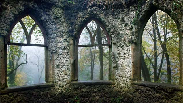 View of misty wood through windows of a ruined building, Hackfall