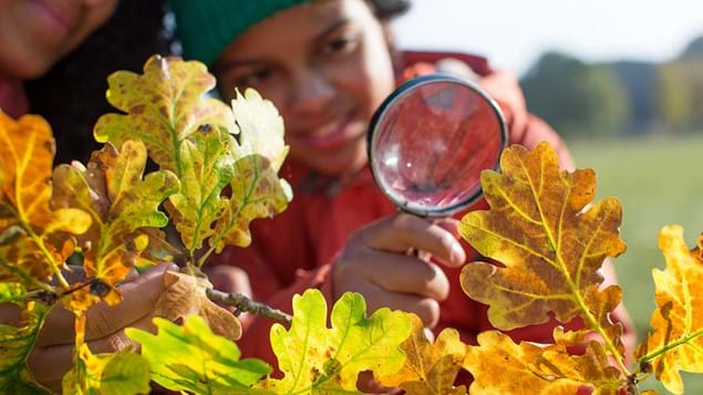 Child and parent looking at autumn leaves with magnifying glass