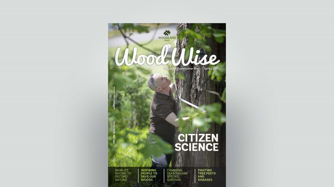 Cover of Wood Wise Spring 2015 - citizen science