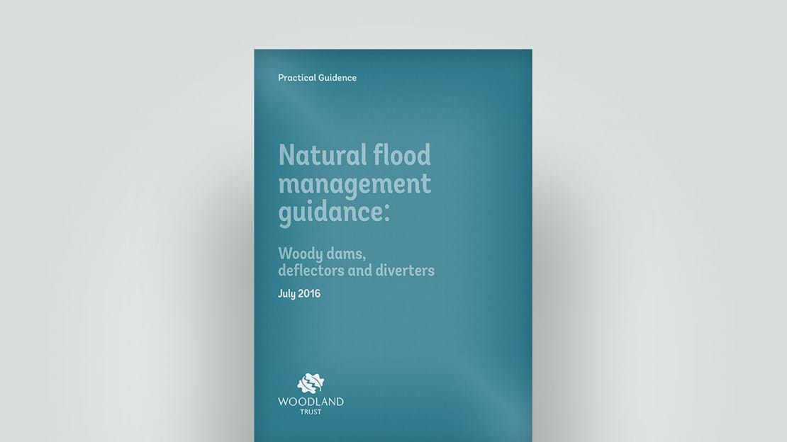 Flood management guidance, 2016