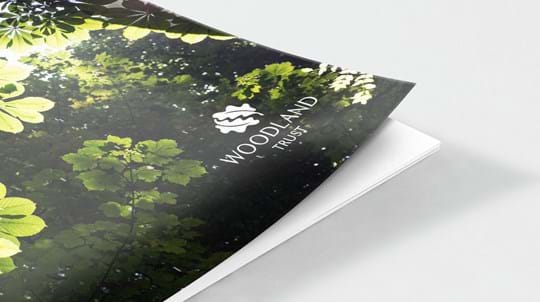 Aldouran Glen document cover