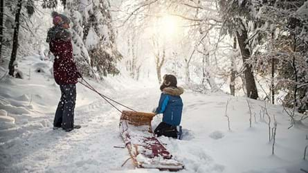 girl and boy sledging in winter woodland