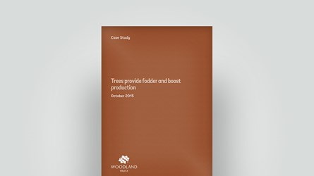 Front cover of a case study