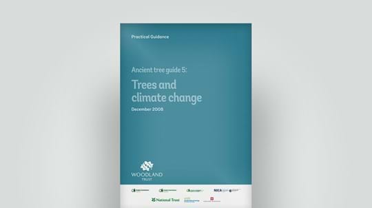 Ancient trees and climate change guide, December 2008