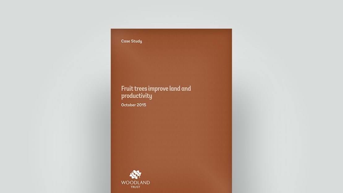 Front cover of case study